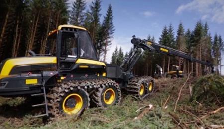 Logging-Sizing